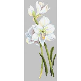 Cross stitch pattern - Beautiful amaryllis
