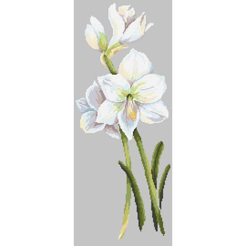 Cross stitch pattern - Beautiful amaryllis