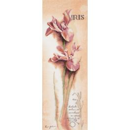 LPN-0008049 Cross stitch kit and printed background - Iris botanical