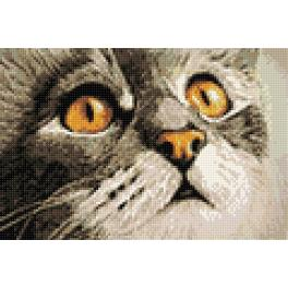 Diamond painting kit - Cat's surprise