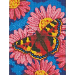 Diamond painting kit - Butterfly