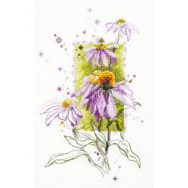 Cross stitch kit - Echinacea