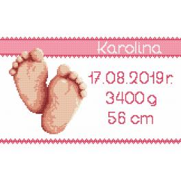 Cross stitch kit - Birth certificate - girl