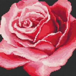 Diamond painting kit - Red rose