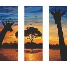 Graphic pattern - Energy of Africa - triptych