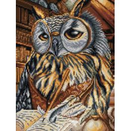 Diamond painting kit - Smart owl