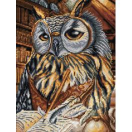 M AZ-1737 Diamond painting kit - Smart owl