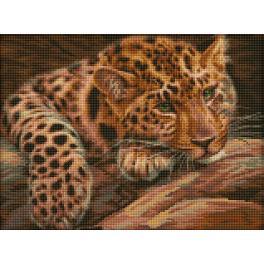 Diamond painting kit - Leopard