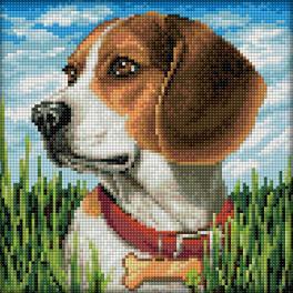 M AZ-1608 Diamond painting kit - Beagle