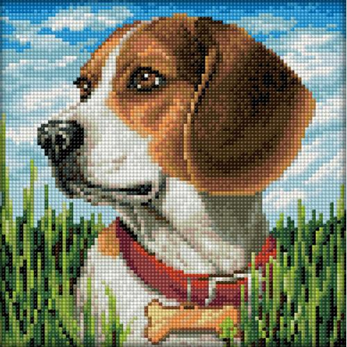 Diamond painting kit - Beagle