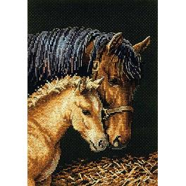 Cross stitch kit - Delicate touch