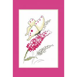 Set with mouline and beads - Occasional card - Butterfly