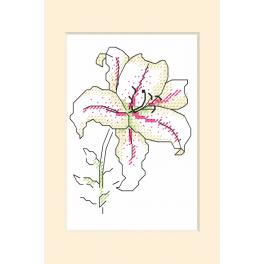 W 10227 Pattern ONLINE - Occasional card - Lily