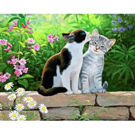 Diamond painting kit - Cat morning