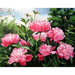 Diamond painting kit - Peony colour