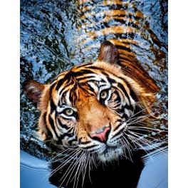 ZTDE 239 Diamond painting kit - Tiger