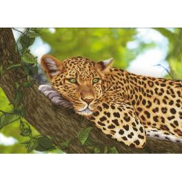 NCP 3263 Kit with mouline and printed background - Jaguar