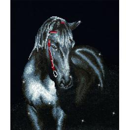 DD10.012 Diamond painting kit - Midnight stallion