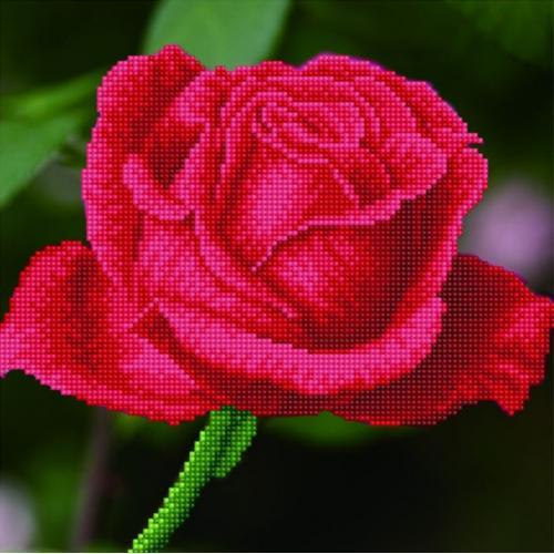 DD5.038 Diamond painting kit - Rose bud