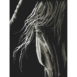 Cross stitch kit - Horse's look