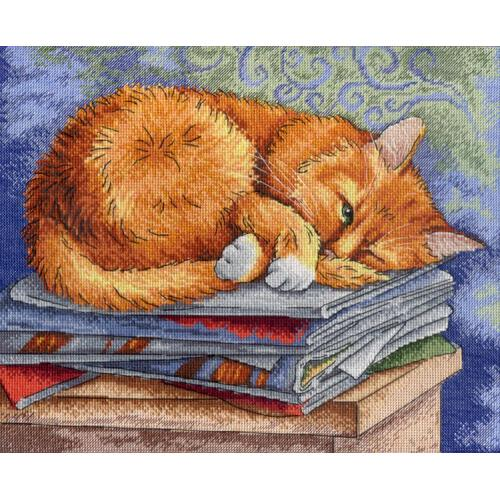 Cross stitch kit - Studying cat