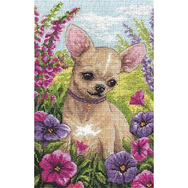 PAJ 1487 Cross stitch kit - Chihuahua