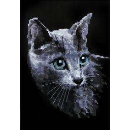 RIO 764 Kit with yarn - Russian blue cat