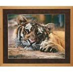 Set with beads - Tiger