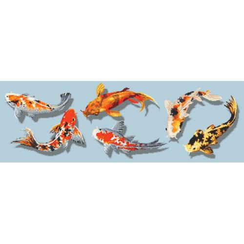 Graphic pattern - Colourful fish