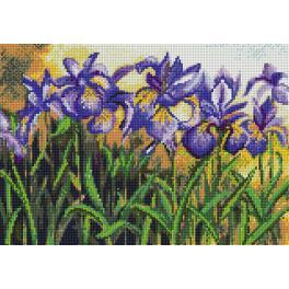 Diamond painting kit - Blue irises