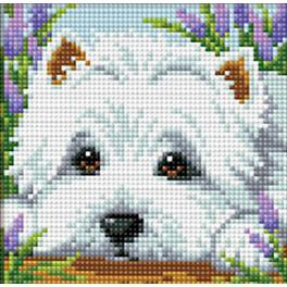 M AZ-1639 Diamond painting kit - Hide and seek with white dog