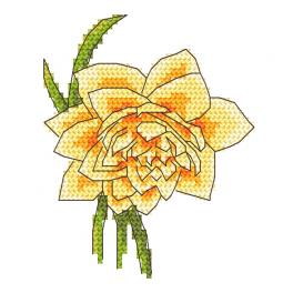W 10255 ONLINE pattern - Daffodil