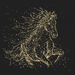 Cross stitch kit - Starry horse