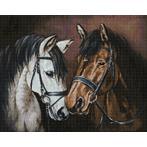 WD2469 Diamond painting kit - Horse tenderness