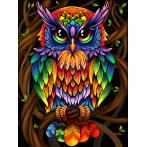 M AZ-1726 Diamond painting kit - Rainbow owl