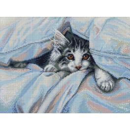 Diamond painting kit - Cat under the blanket