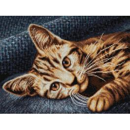 Diamond painting kit - Cat Barsik