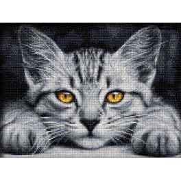 Diamond painting kit - Yellow - eyed kitten