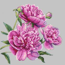 GC 10272 Cross stitch pattern - Beautiful peonies