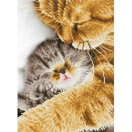 DD7.037 Diamond painting kit - Tender moment