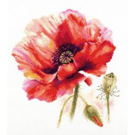 Cross stitch kit - Bright red poppy