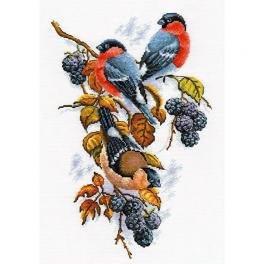 Cross stitch kit - Bullfinches on blackberry