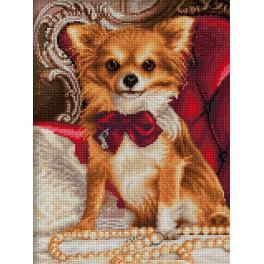 Diamond painting kit - Chihuahua with bow tie