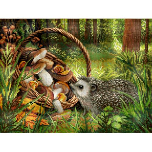 M AZ-1760 Diamond painting kit - Hedgehog in the forest