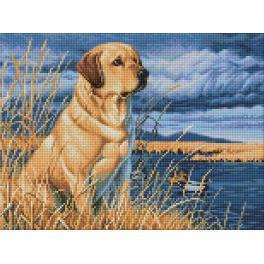 Diamond painting kit - Labrador on the hunt