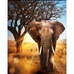 M AZ-1783 Diamond painting kit - African elephant