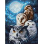 Diamond painting kit - Night owls