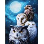Diamond painting kit - Night owls