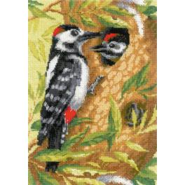 Kit with yarn - Woodpecker