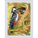 RIO 1851 Kit with yarn - Woodpecker